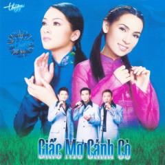 Tân Cổ: Thành Phố Buồn - Phi Nhung, Mạnh Quỳnh