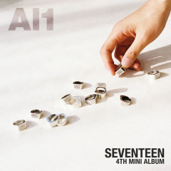 Don't Wanna Cry - SEVENTEEN