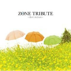 Secret Base ~君がくれたもの~ (Secret Base ~ Kun Gakuretamono ~) ( 10 Years After Ver. ) ( Bonus Track ) - Various Artists