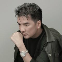 Tan Vỡ (Remix) - Đàm Vĩnh Hưng