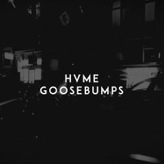 Goosebumps - HVME