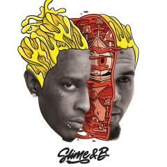 Go Crazy - Chris Brown, Young Thug